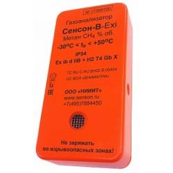 Индивидуальный газоанализатор Сенсон-В-1001
